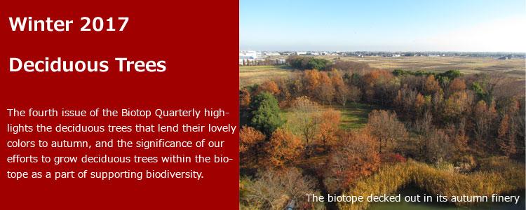 Biotope Quarterly No.4